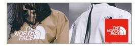ノースフェイス THE NORTH FACE メンズ Tシャツ 半袖 ボックスロゴ ロゴT ハーフドーム