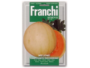 Franchi イタリアンメロン