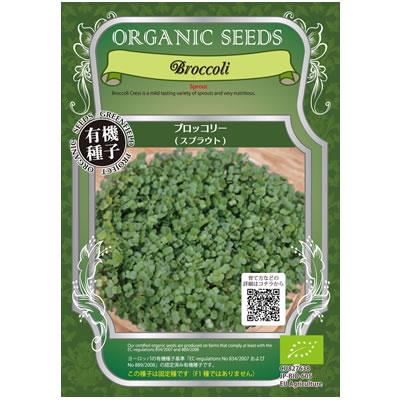 ブロッコリー スプラウト種子