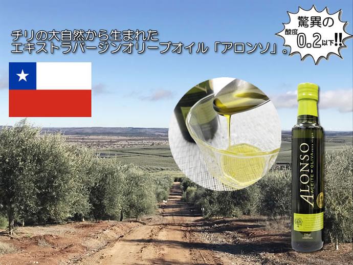 チリの早積みオリーブ使用 アソンソエクストラバージンオリーブオイル