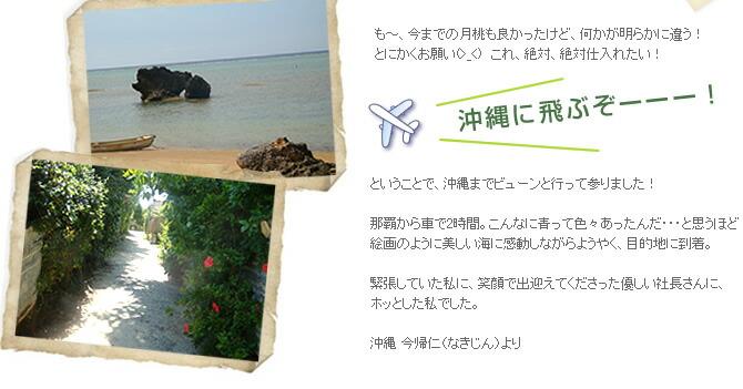沖縄に飛んでみました
