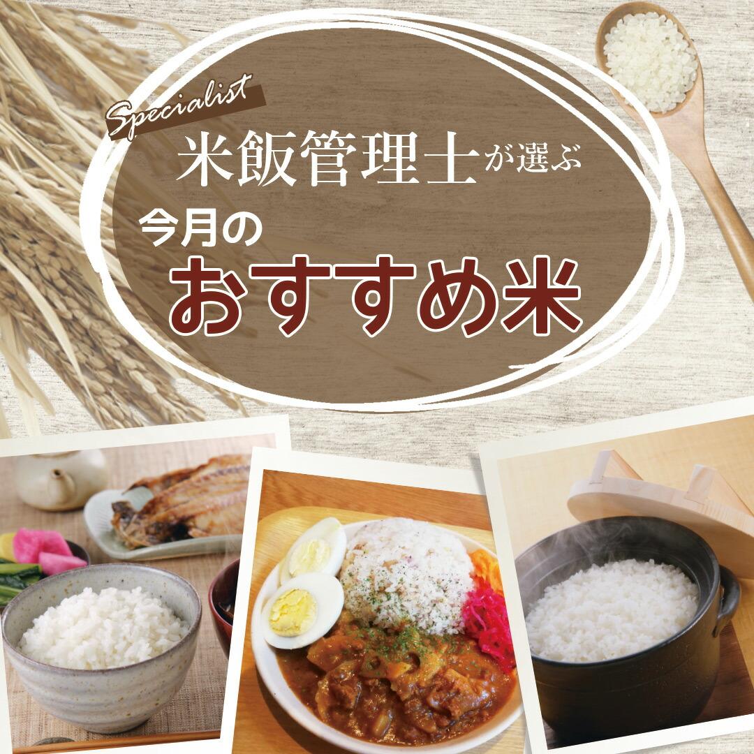 米飯管理士が選んだおススメ米