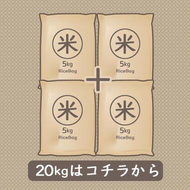 20kgはコチラ