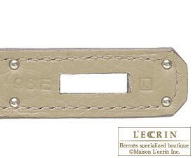 エルメスバーキン30プシエールトリヨンクレマンスシルバー金具