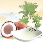 精製ココナッツオイル