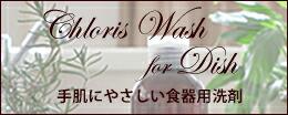 食器用洗剤ChlorisWashforDish
