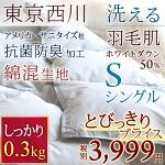2017年新商品!とってもお手頃!東京西川 夏用 羽毛布団 肌掛け布団 シングル ホワイトダウン50% 0.3kg 洗える 西川産業 羽毛肌布団 ウォッシャブル 西川寝具