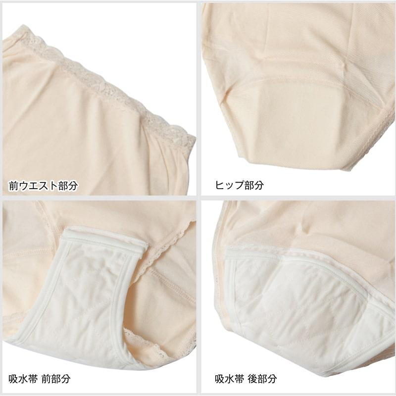 Suteteko 婦人 40cc対応 安心快適ショーツ 2枚組 S~LL  (中失禁 尿漏れ レディース パンティー 失禁パンツ 失禁ショーツ 吸水)(送料無料) 【取寄せ】