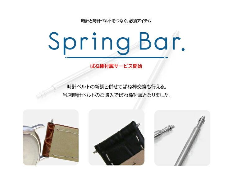 Spring Bar