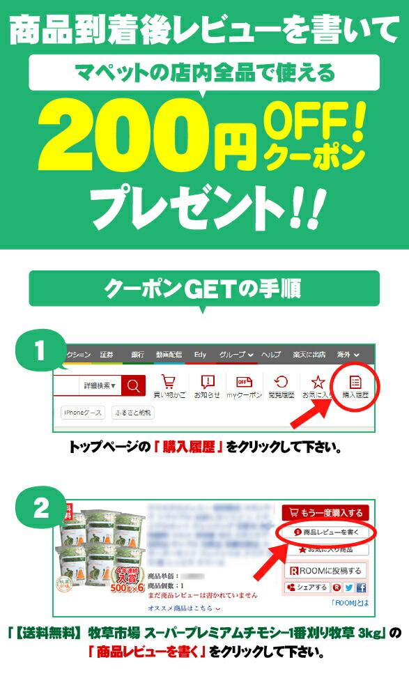 レビュー200円クーポンプレエント_1