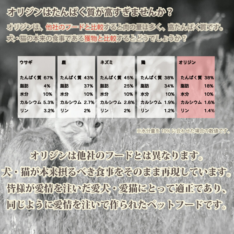オリジンキャット_説明_7