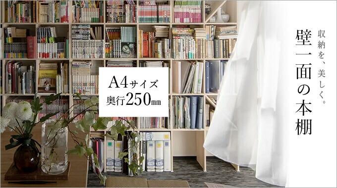壁一面の本棚 奥行250mm
