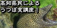 高知県民によるウツボ食講座