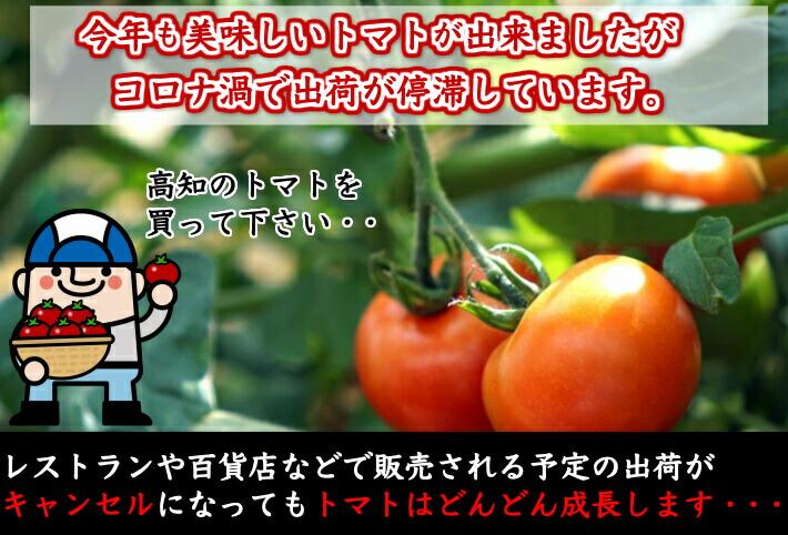 トマト応援