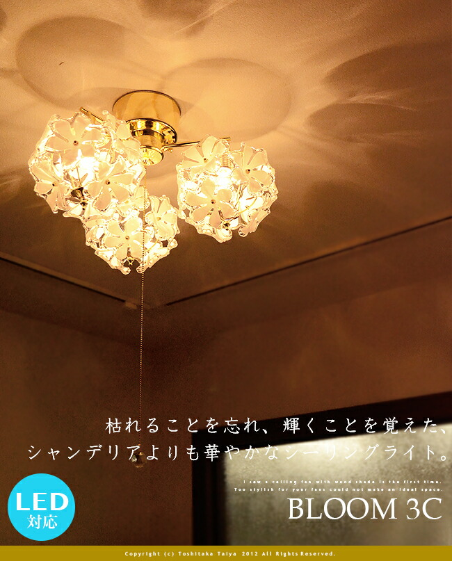 Markdoyle rakuten global market bright bloom 3 c 3 bloom bloom 3 c pull ceiling lights mozeypictures Images