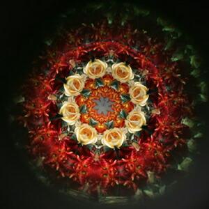 彩色畫唐草花紋(有田燒萬華鏡)圖片