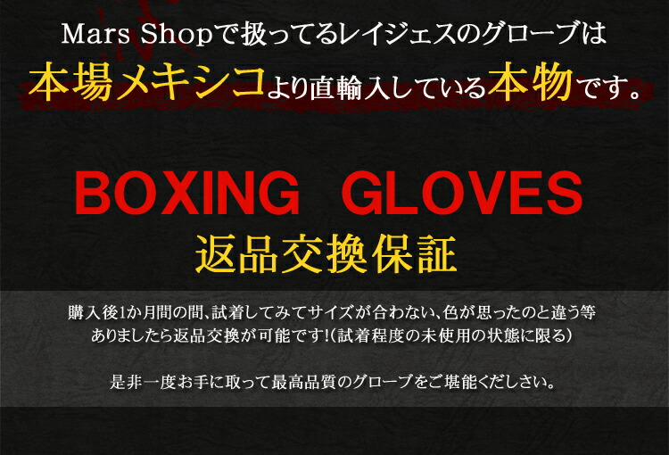 Cleto Reyes Leather Boxing Bag Gloves with Hook and Loop Closure 世界のボクシングブランド REYES製 レイジェス パンチンググローブ ボクシング グローブ