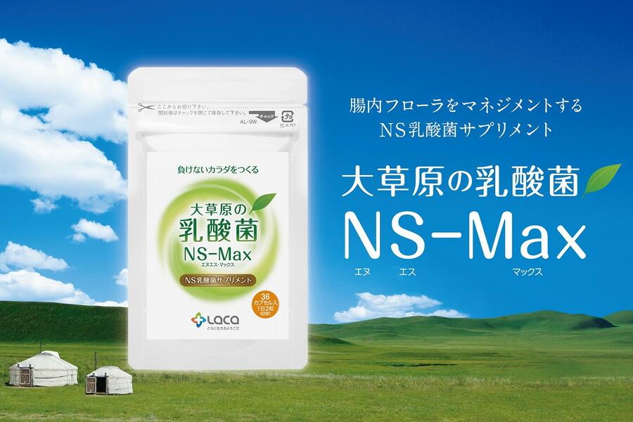 大草原の乳酸菌 NS-Max(エヌエス・マックス)モンゴルの大自然が育んだ天然サプリメント