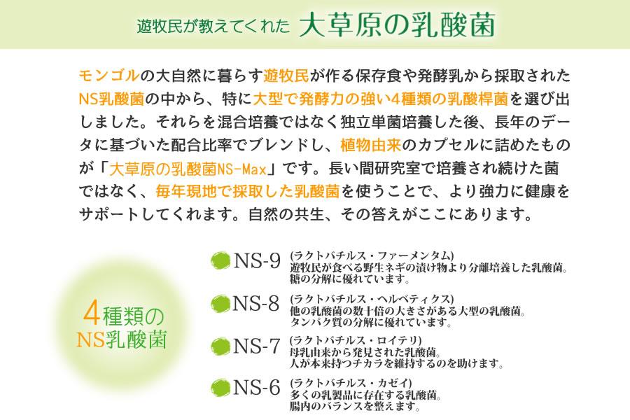 大草原の乳酸菌 NS-Max(エヌエス・マックス)4種類のNS乳酸菌配合サプリメント