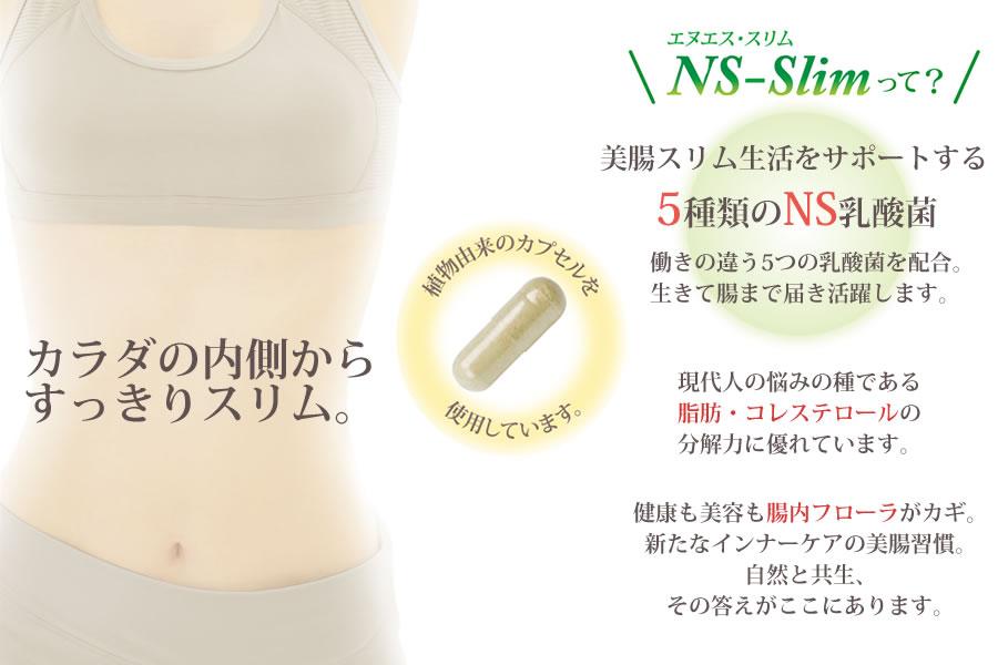 大草原の乳酸菌 NS-Slim(エヌエス・スリム)美腸スリム生活をサポートする5種類のNS乳酸菌