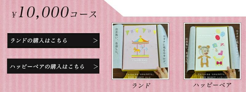 10000円コースの商品