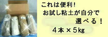 4種おためし