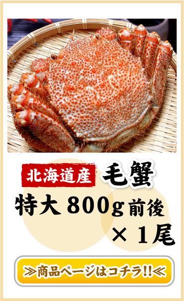 毛蟹1尾800g