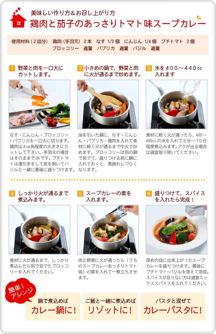 鶏肉と茄子のあっさりトマトスープカレー