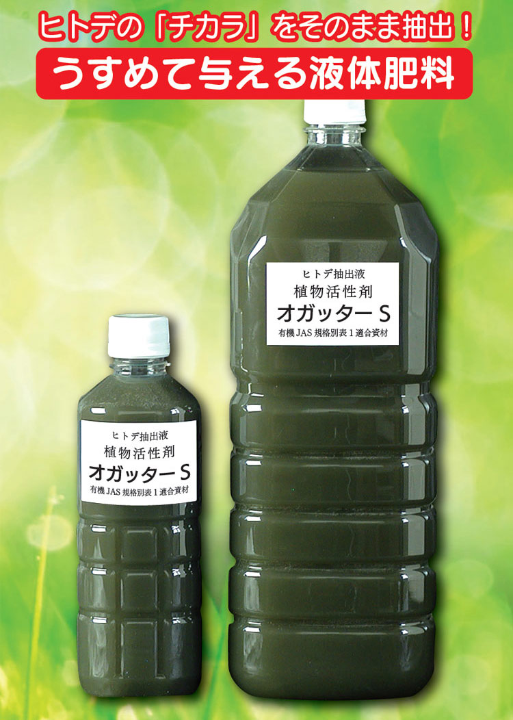 うすめて与える液体肥料