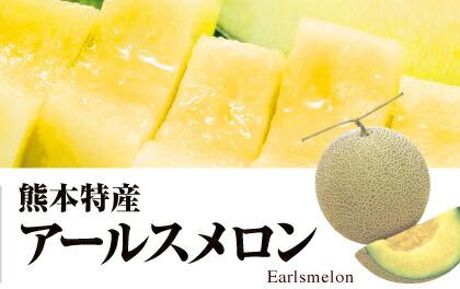 熊本 アールスメロン