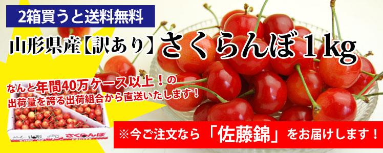 2箱買うと【送料無料】山形県産【訳あり】さくらんぼ