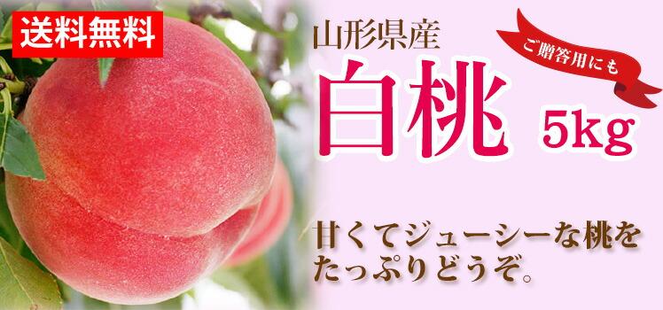 山形の白桃