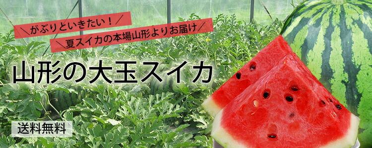 【送料無料】山形の大玉スイカ