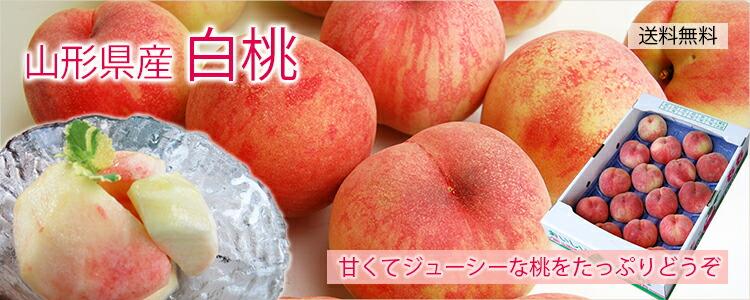 山形県産白桃