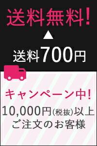 1万円(税抜)以上ご注文のお客様12/20より送料無料!