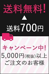 5,000円(税抜)以上ご注文のお客様送料無料!
