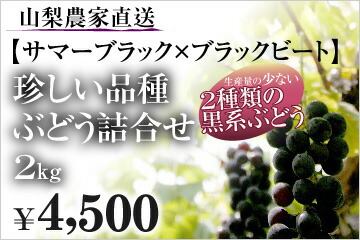 山梨農家直送【サマーブラック×ブラックビート】珍しい品種ぶどう詰合せ 2Kg