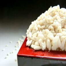 国産米生こうじ4kg