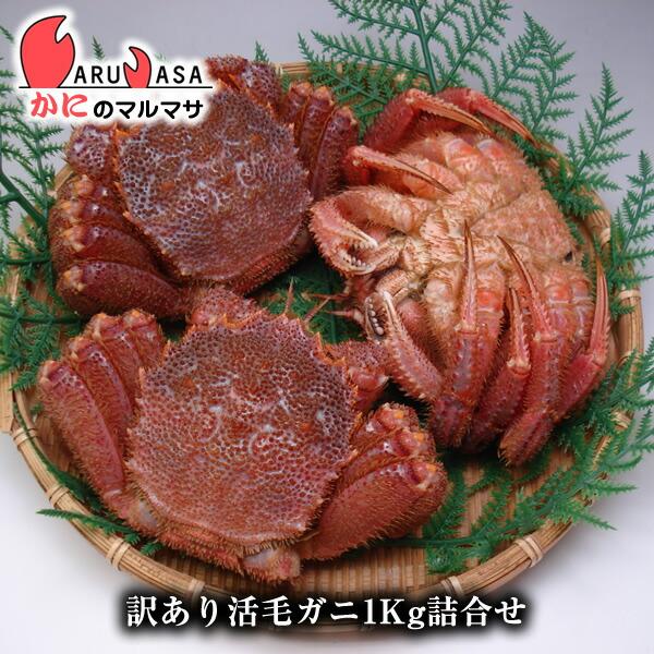 北海道産訳あり活毛ガニ(ダルマ)1kgセット