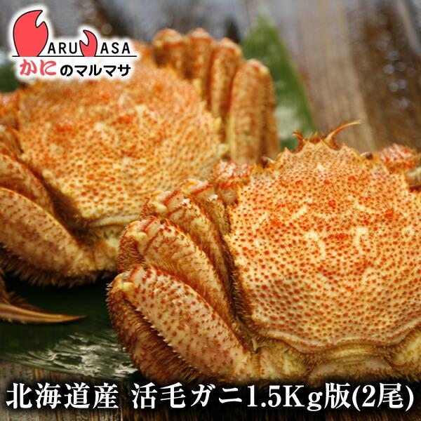 【かにのマルマサ】新鮮毛ガニ1.5kg詰合せ(2尾入り)期間限定価格!身入りばっちり!蟹みそがたっぷりつまった毛がに北海道産極上毛蟹!
