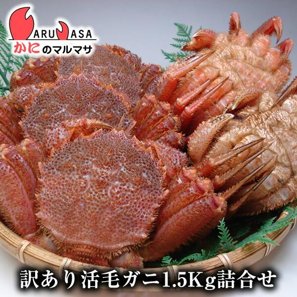 北海道産訳あり活毛ガニ(ダルマ)1.5kgセット