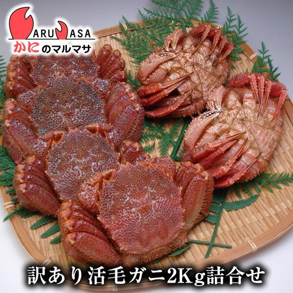 北海道産訳あり活毛ガニ(ダルマ)2kgセット