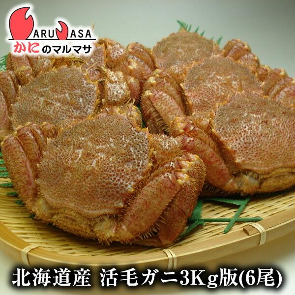 北海道産活毛ガニ3kg詰合せ(6尾入り)身入りばっちり!蟹みそがたっぷりつまった毛がに北海道産極上毛蟹!