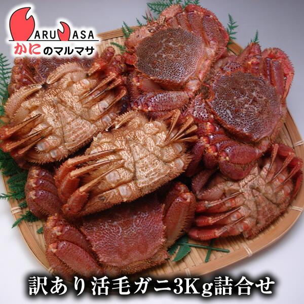 北海道産訳あり活毛ガニ(ダルマ)3kgセット
