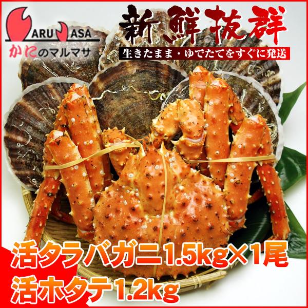 【かにのマルマサ】北海道海の幸福袋ギフトに大人気!活タラバガニ1.5kgと活ホタテ1.2kgセット