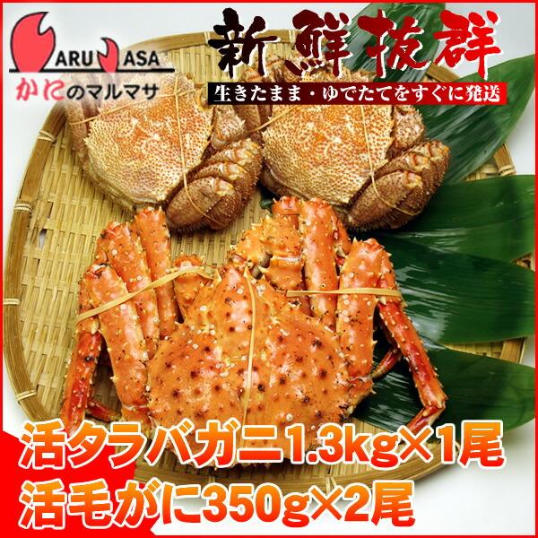 【かにのマルマサ】北海道海の幸福袋ギフトに大人気!活タラバ1.3kgと活毛蟹350g×2尾セット