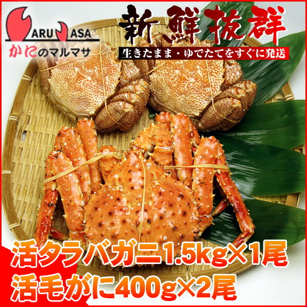 【かにのマルマサ】北海道海の幸福袋ギフトに大人気!活タラバガニ1.5kg×1尾と活毛蟹400g×2尾セット