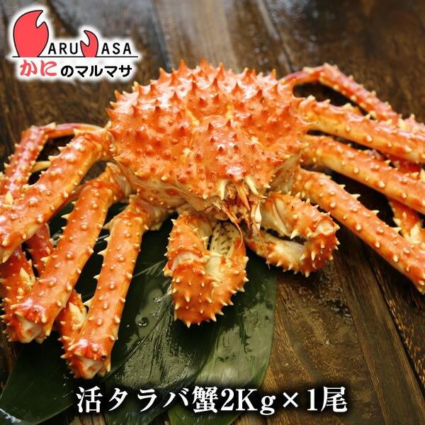 【かにのマルマサ】北海道直送新鮮タラバガニ2.0kg前後期間限定価格!このボリュームがたまらない!未冷凍の鱈場ガニ!