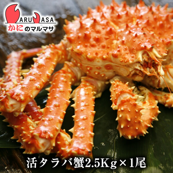【かにのマルマサ】北海道直送新鮮タラバガニ2.5kg前後期間限定価格!このボリュームがたまらない!未冷凍の鱈場ガニ!