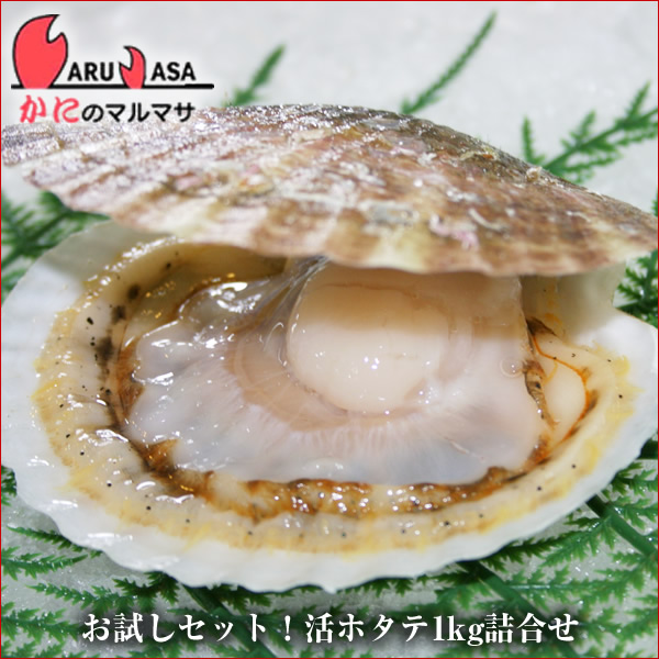 北海道産 活ホタテ貝1kg詰め合わせセット(1ケース)